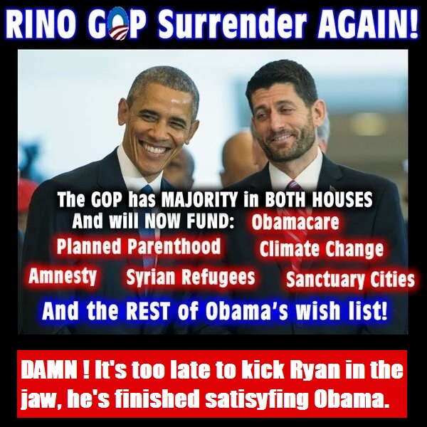 RINO-surrender.jpg